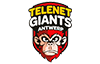 Telenet Giants Antwerp